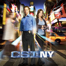 Csi: NY: Who's There?